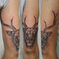 tatuaggio leone cervo